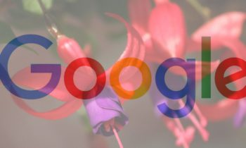 Fuchsia OS and the Internet of Things